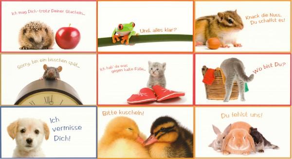 Grußkarten Postkarten 9 Motive Top Ware Sort.2 (54 Stück)