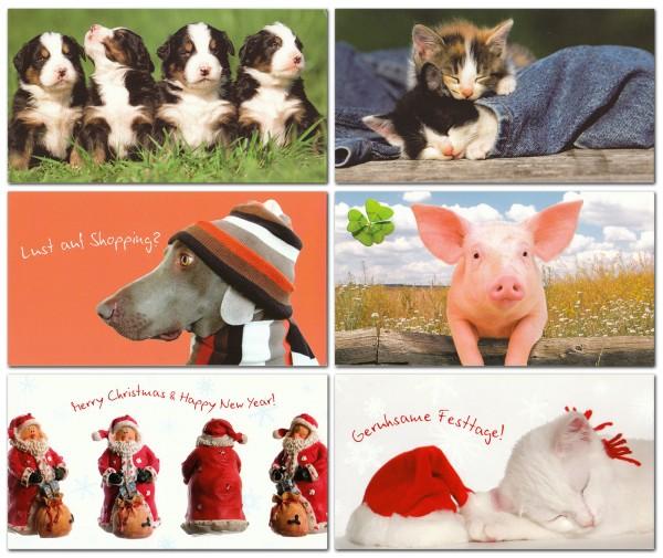 Grußkarten Postkarten 6 Motive Top Ware Sort.3 (36 Stück)